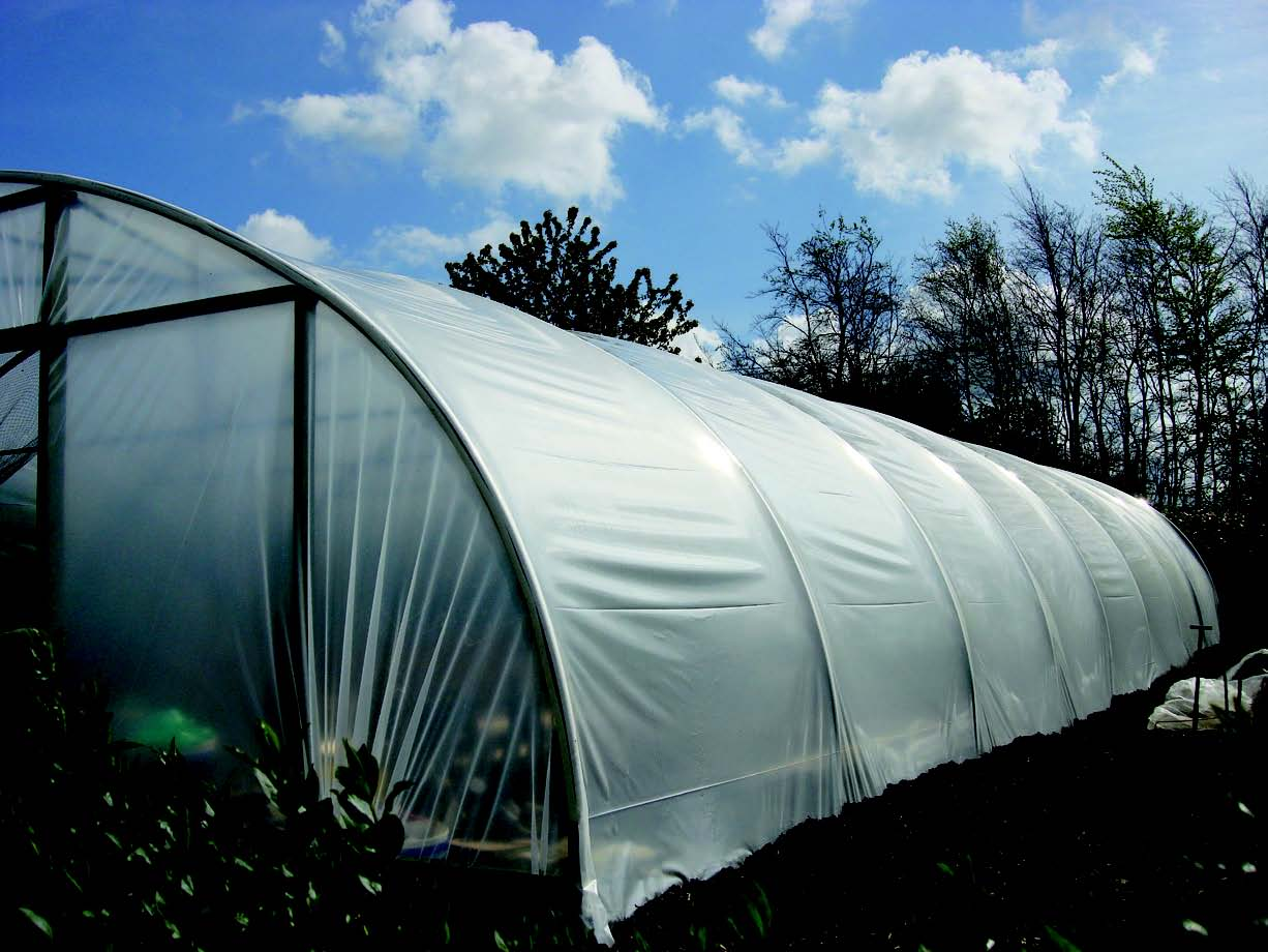 Polytunnel green house